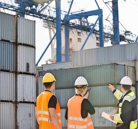 pre_shipment_inspection